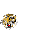 REDCLIFFE TIGERS AFC HORIZONTAL